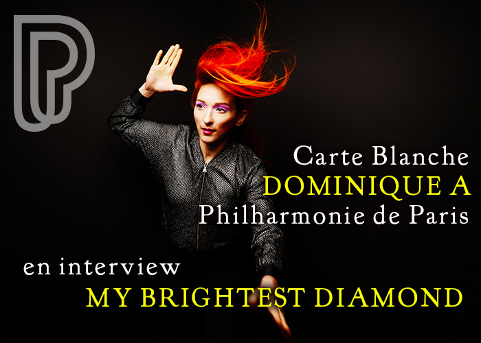 My Brightest Diamond en interview