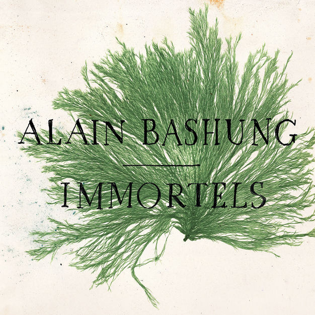 Alain Bashung - Immortels - Dominique A