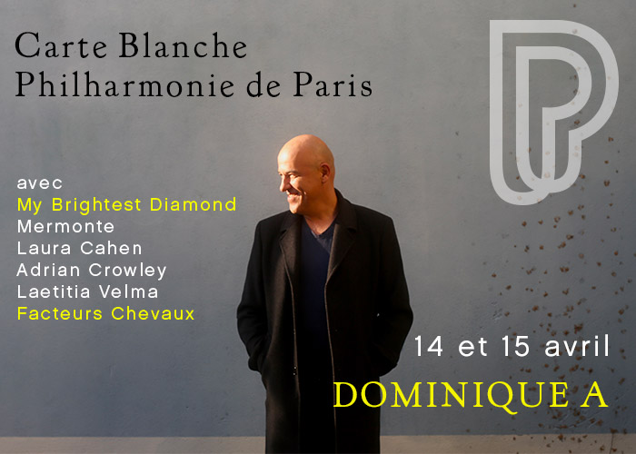 Dominique A - Philharmonie de Paris